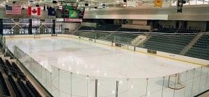 scartax-hockey rink